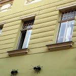5 nuisibles qui pourraient envahir votre maison, comment s'en débarrasser ?