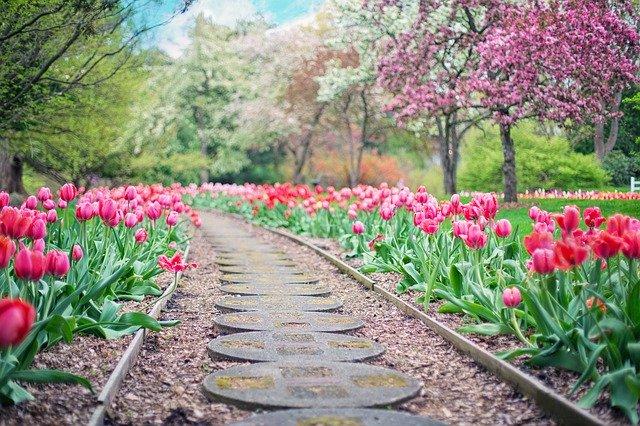 Idées et exemples pour l'aménagement de son jardin