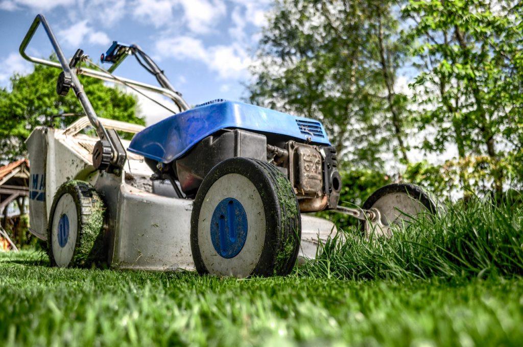Tondeuse bleu dans herbe