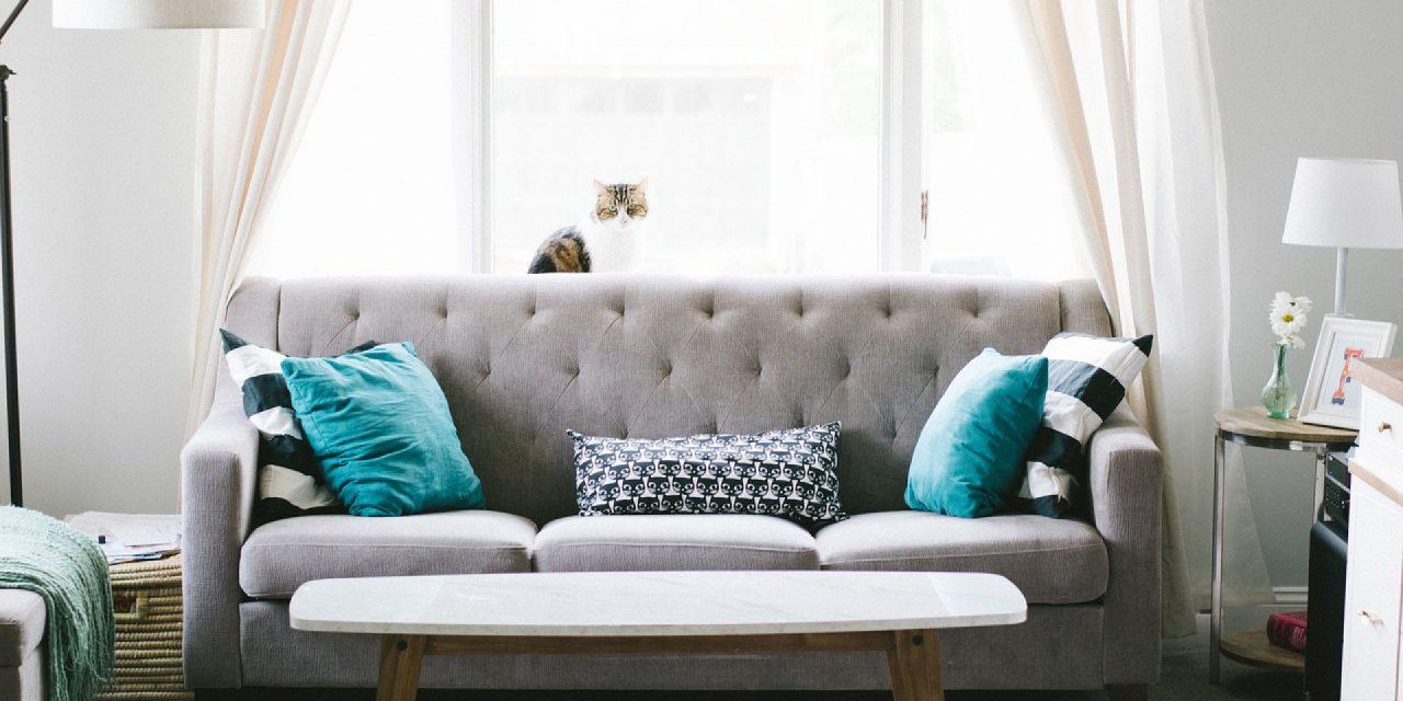 Une promotion très alléchante pour un canapé design